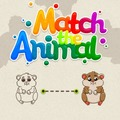 Jeu De Match De L'Animal