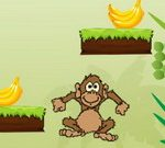 Singe Banane Sauter