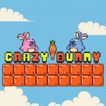 Crazy Bunny