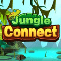 Jungle Connecter