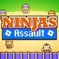 Les Ninjas D'Assaut