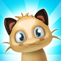Popping Animaux De Compagnie